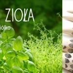 Delisam.pl,  zdrowa żywność z całego świata  w jednym miejscu