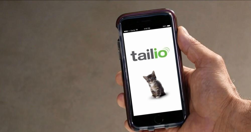 Inteligentna kuweta Tailio zadba o zdrowie twojego kota