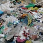 Biodegradowalny plastik  już  nie tak ekologiczny