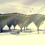 Farmy alg w miastach zamiast lasów?