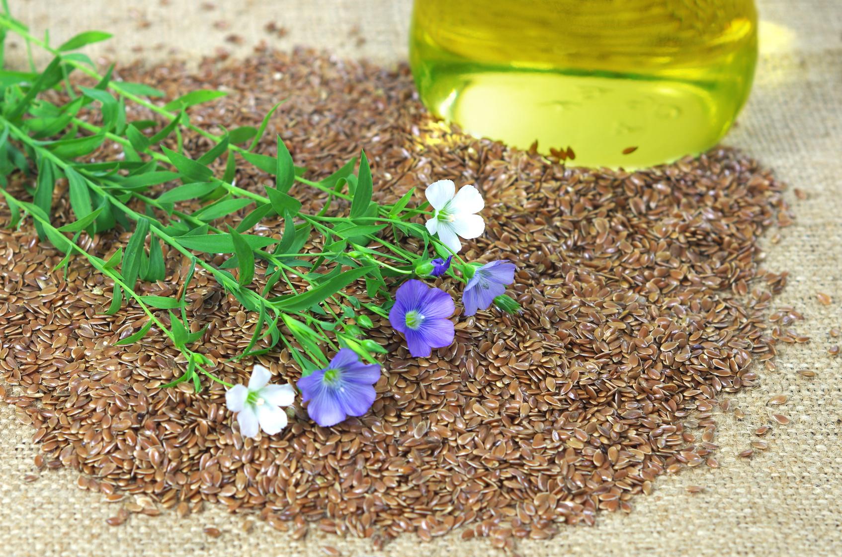 Dlaczego warto zażywać olej lniany ?