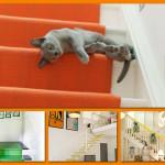 Domowe inspiracje: kolorowe schody w Twoim domu