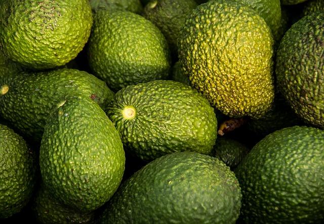 hass-avocado-882635_640