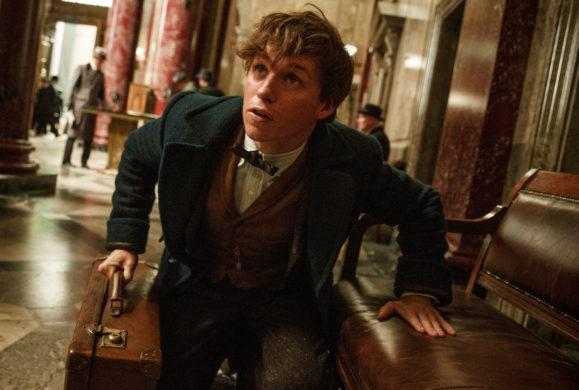 """Dobra informacja dla fanów Harry'ego Pottera.  Powstanie aż pięć części nowej filmowej serii """"Fantastyczne zwierzęta i jak je znaleźć"""""""