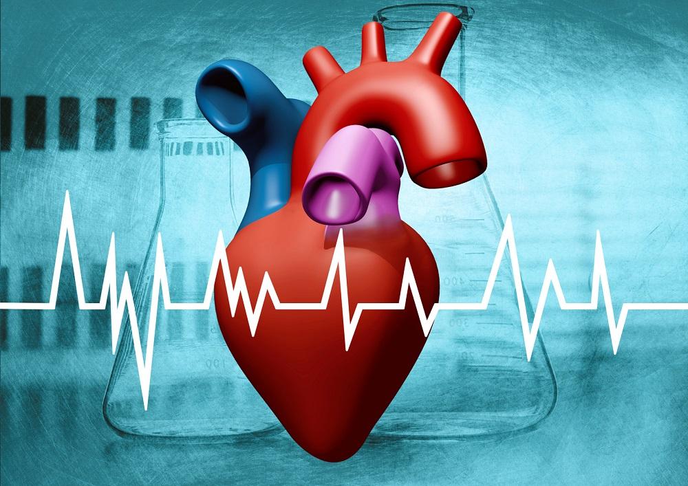 Na miesiąc przed zawałem serca Twoje ciało wysyła Ci ważne ostrzegawcze sygnały. Poznaj je i reaguj ….