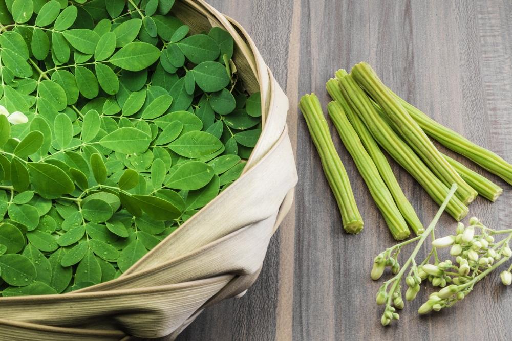 Drzewo obfitości: 10 powodów, dla  których warto jeść liście moringa każdego dnia
