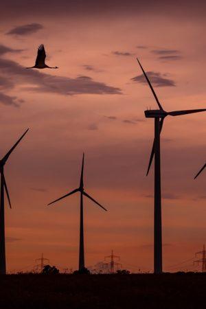 turbina-za-3-tysiace-zl-ktora-zapewni-prad-na-cale-zycie