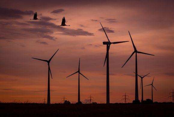 Turbina za 3 tysiące zł, która zapewni prąd na całe życie