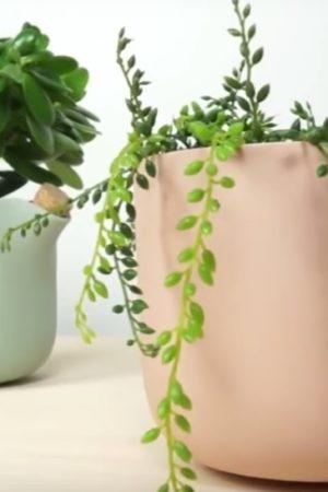 The Natural Balance doniczka ktora sama przypomina o podlewaniu kwiatow
