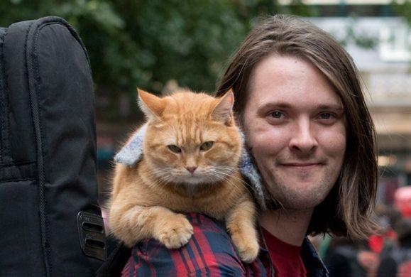 """Kot jest najlepszym przyjacielem człowieka. """"Kot Bob i ja"""",  wzruszająca historia muzyka, któremu kot pomógł w walce z nałogiem narkotykowym"""