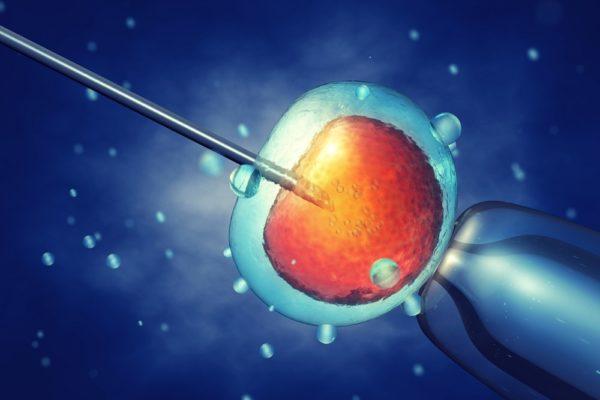 zamrażanie komórek jajowych